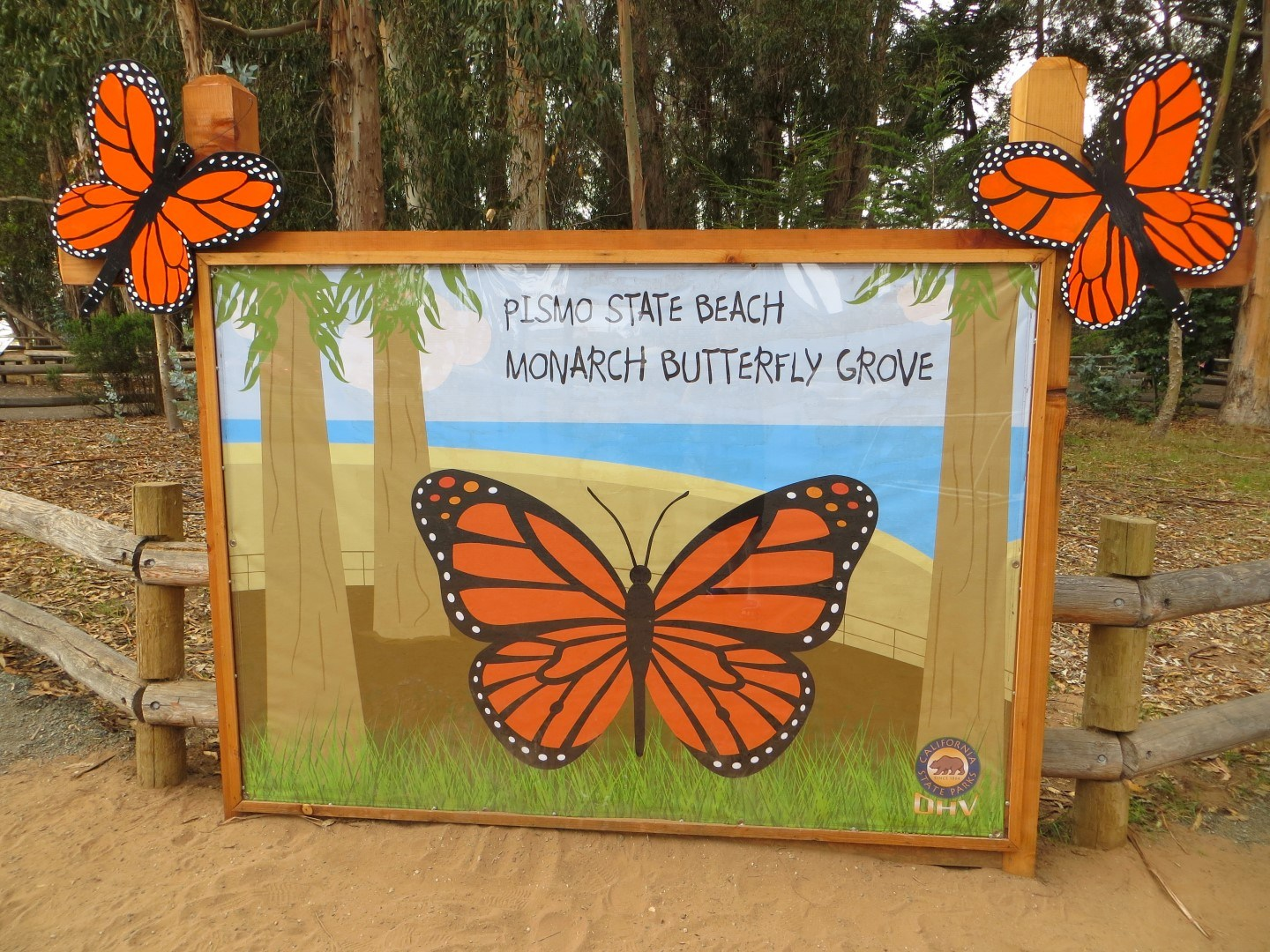 At North Beach Located Off Of Highway 1 In Pismo High Season Goes From November Through February And Highlights The Millions Monarch Erflies