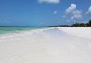 PAJE BEACH – ZANZIBAR, TANZANIA