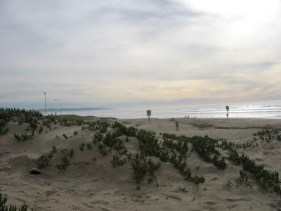 nipomo-dunes